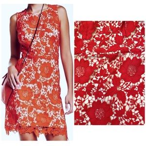 Nordstrom Rack Red Floral Lace Sleeveless Shift 4P